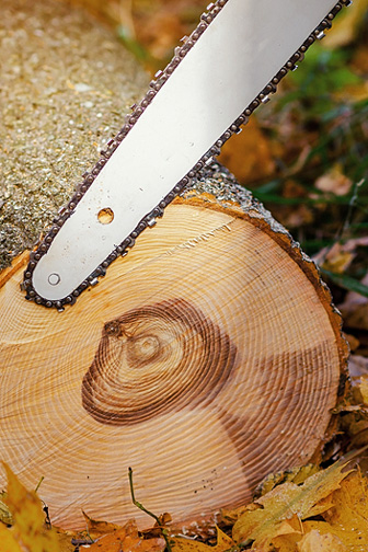 Chain Saw Blade and Wooden Log